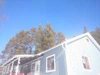 vårvinter: echte blauwe lucht!