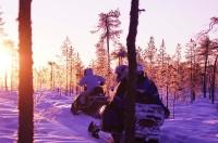 zoevend door besneeuwde bossen