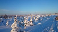nog steeds winter in Lapland